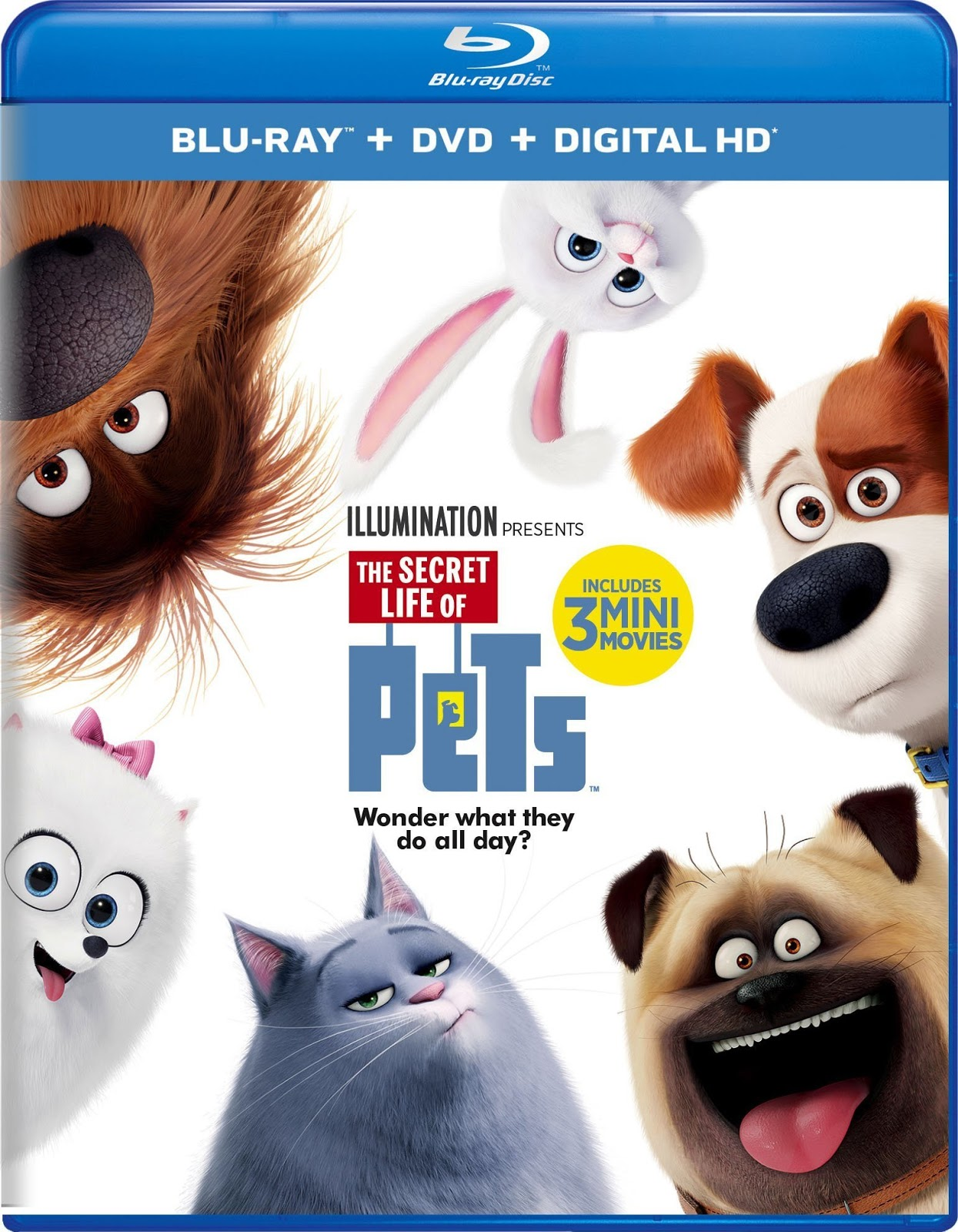 The Secret Life of Pets 2016 Dual Audio BRRip 480p 250mb