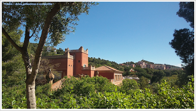 Conhecendo a Europa; sem guia; turismo na espanha; Park Guell;