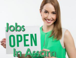 govt Job In Assam