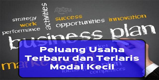 Peluang usaha terbaru dan terlaris modal kecil