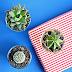 DIY: Kvetináč zo sklenených pohárov