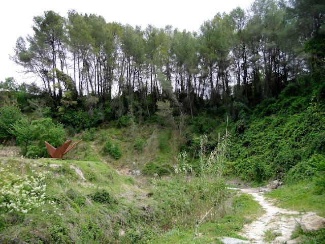 Bosc Carrícola