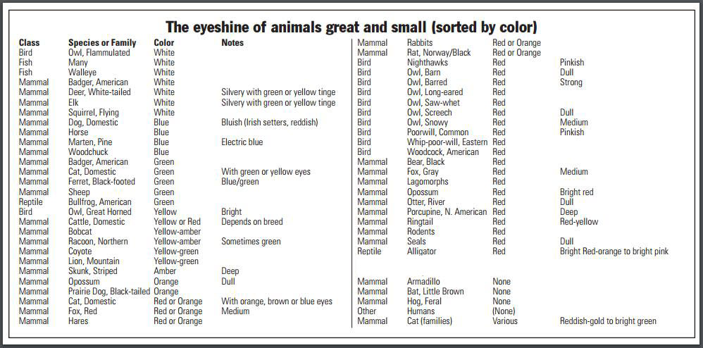 From The Chart We See That Following Animals Have Red Eyeshine Owls Whip Poor Will Black Bears Opossums Porcupine And Even Domestic Cats Sometimes