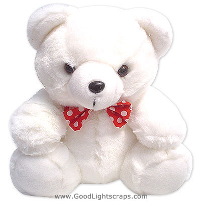 Cute Milky White Teddy BearWhite Teddy Bears Pictures