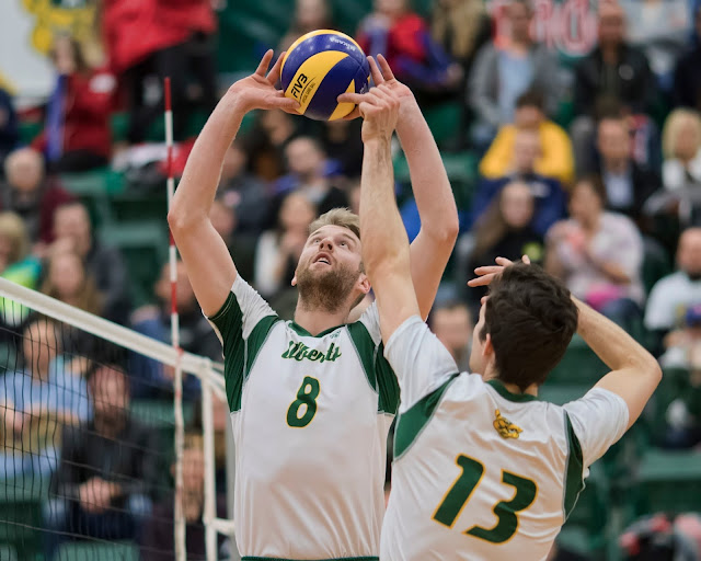 Brett Walsh, Golden Bears Volleyball