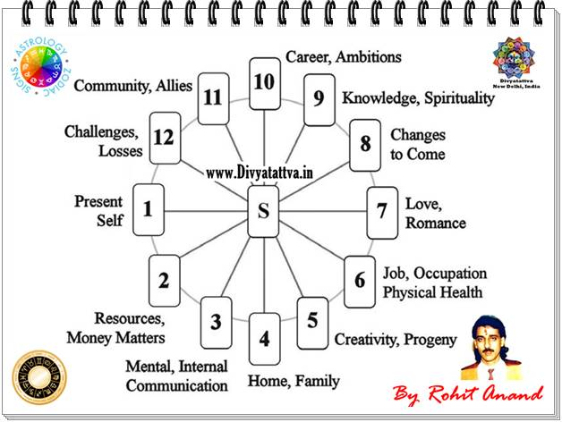 career tarot horoscope