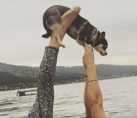 Instagrams That Will Make You Want to Om with Animals