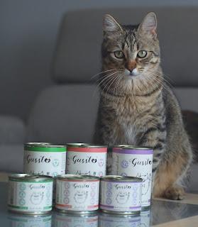 Karma mokra dla kotów Gussto