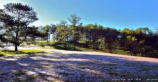 6 điểm chụp hình đẹp như mơ ở Lâm Đồng 13
