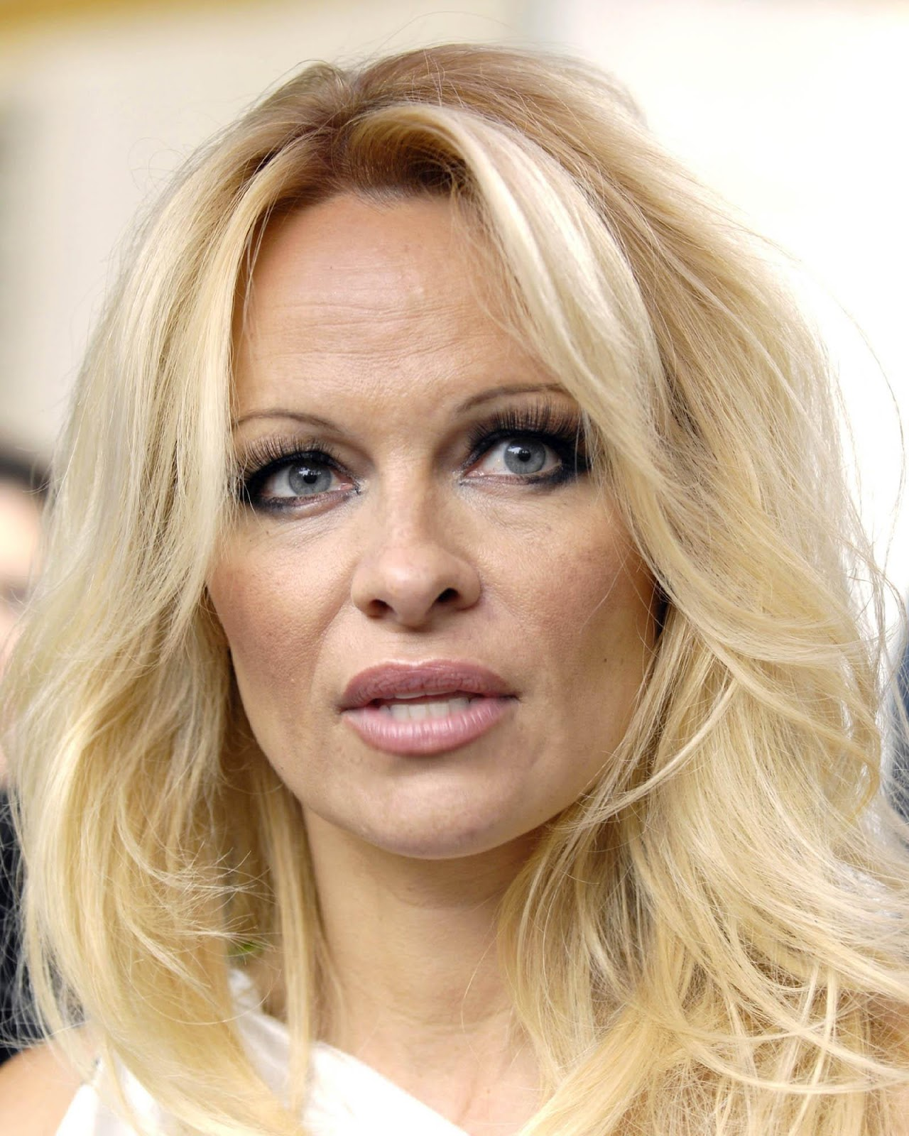 Hollywood All Stars Pamela Anderson Pictures Profile And