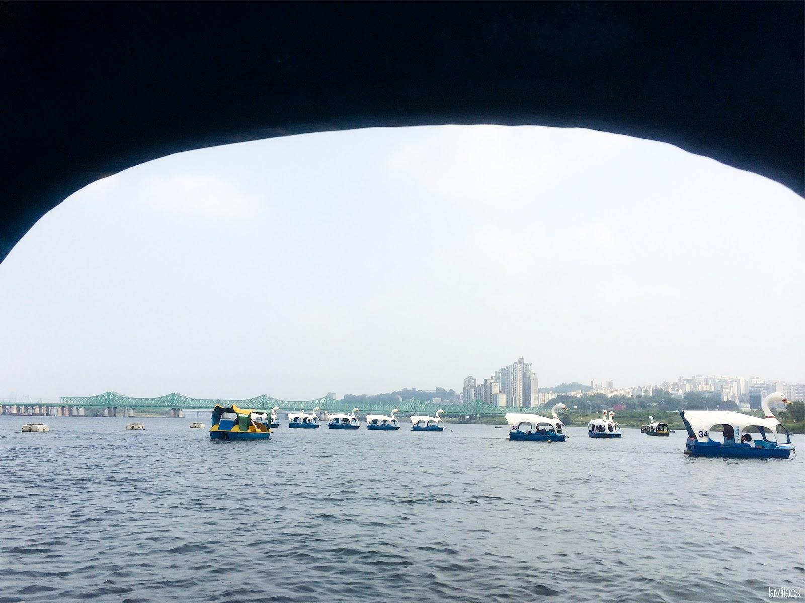 Seoul, Korea - Summer Study Abroad 2014 - Yeouido Park - Han River - swan pedal boats
