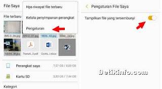 menyimpan fle foto video WhatsApp status