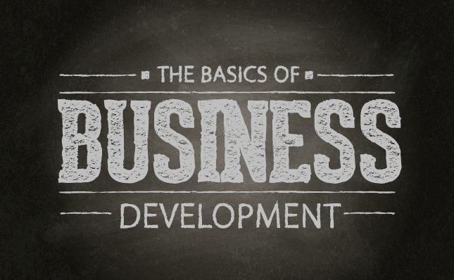 All About Business Development Basics | Vyas Infotech