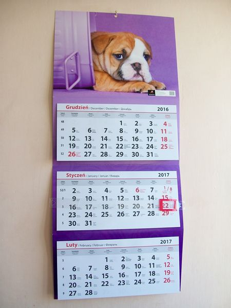 tani kalendarz 2017