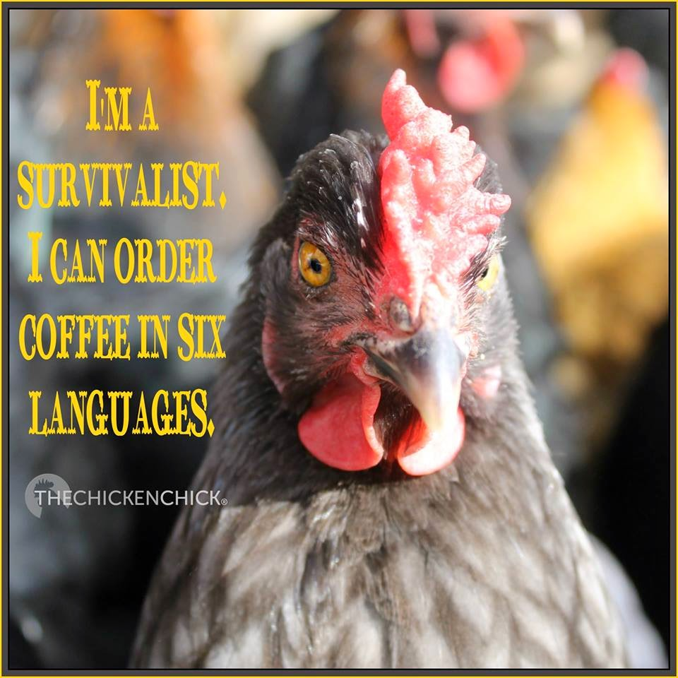 I'm a survivalist: I can order coffee in six languages.