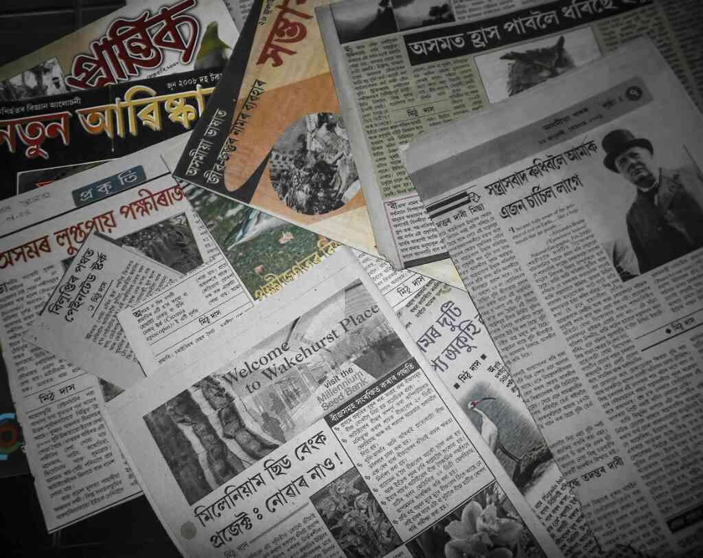 Assamese articles by Mithu Das