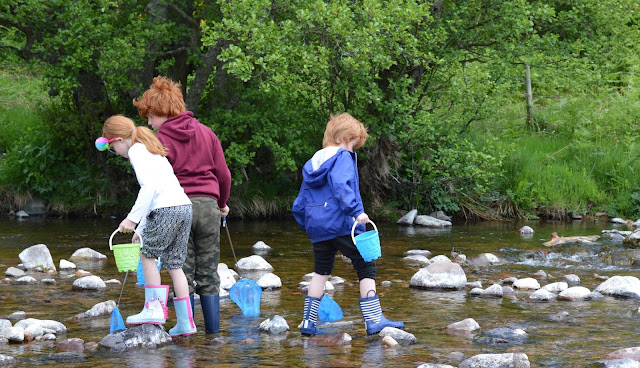 A Family BBQ at Ingram Valley, Northumberland National Park  - fishing net