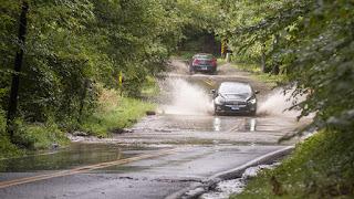 Annapolis Flood Tree Removal Needed