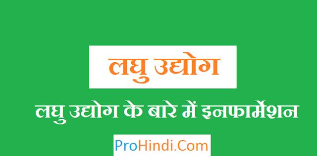 Laghu Udyog in Hindi
