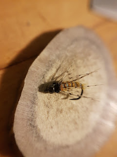 Caddis nymph Fly