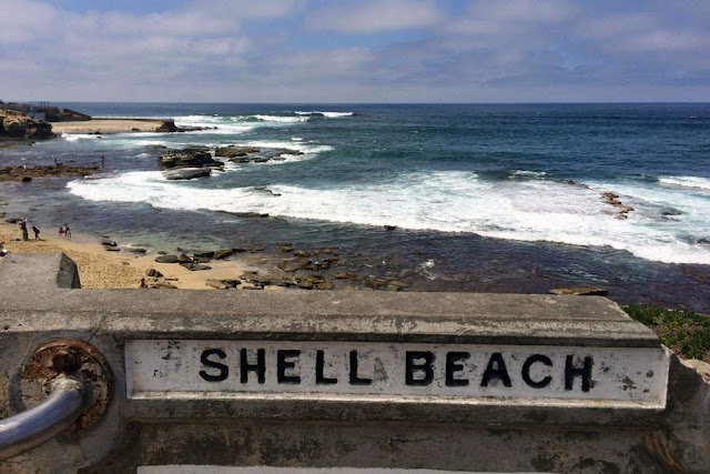 shell beach san diego