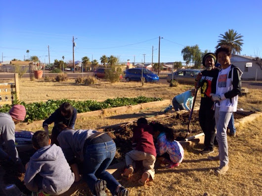 Community Garden in South Phoenix, The Tiger Mountain Foundation