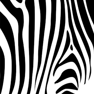 Animal Print Free Printable Papers.