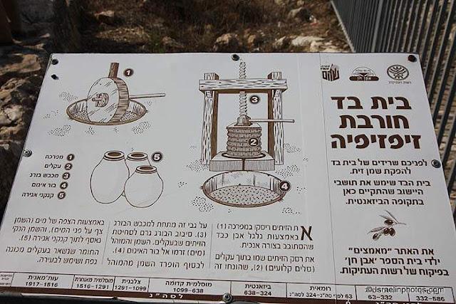 ישראל בתמונות - שוהם: בית בד חורבת זיפזיפיה
