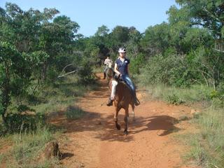 Etelä-Afrikka, laukka, ratsastussafari, riitta reissaa