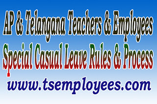 Telangana Special Casual Leave Rules