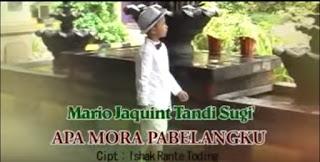 Lirik Lagu Apa Mora Pabelangku (Salma Margarteh)