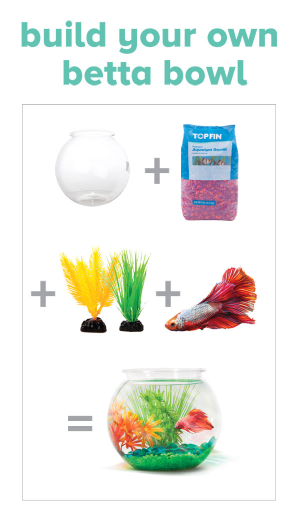 The bunny hugger petsmart need to do better by betta fish for Petsmart fish bowl