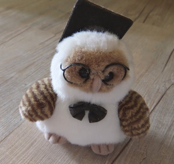 This little owl doll was a gift from my sister
