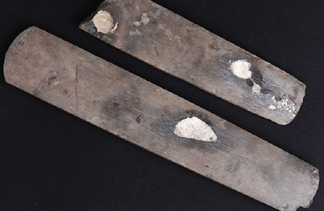 Neolithic flint axes found in Denmark