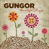Gungor Beautiful Things Lyrics