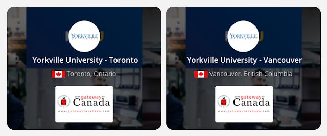 Yorkville University: $10,000 Exclusive Scholarship