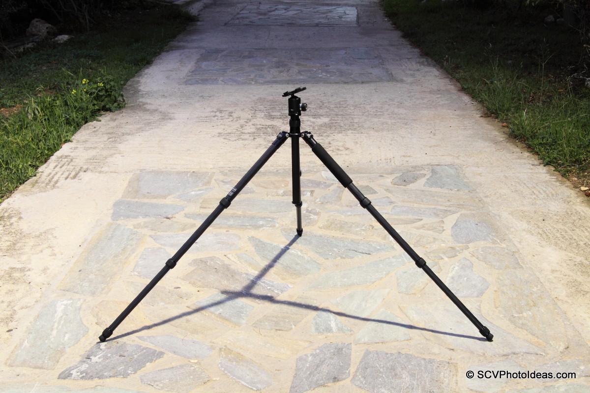 Triopo GT-3228X8C legs spread 44d w/ Sunwayfoto DB-36TRLR - park fullview