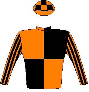 Secret Potion - Silks - Owner: Mr S M Jerrier - Colours: Orange and black quartered, striped sleeves, checked cap, orange peak