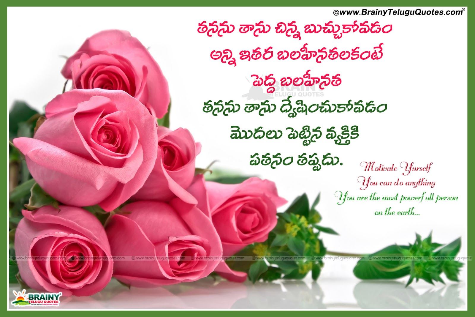 Beautiful Flowers Images With Quotes In Telugu Wallpapersjpg