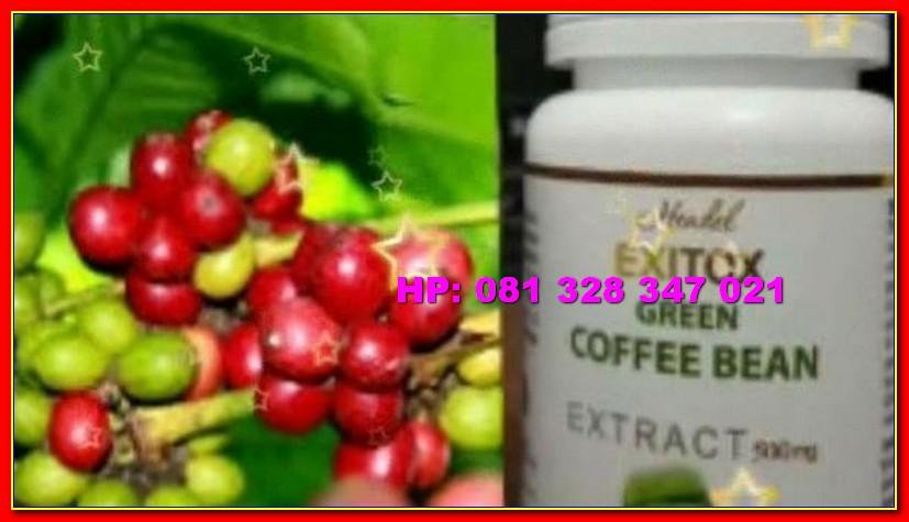 Exitox Green Coffee Bean Hendel Kapsul Pelangsing