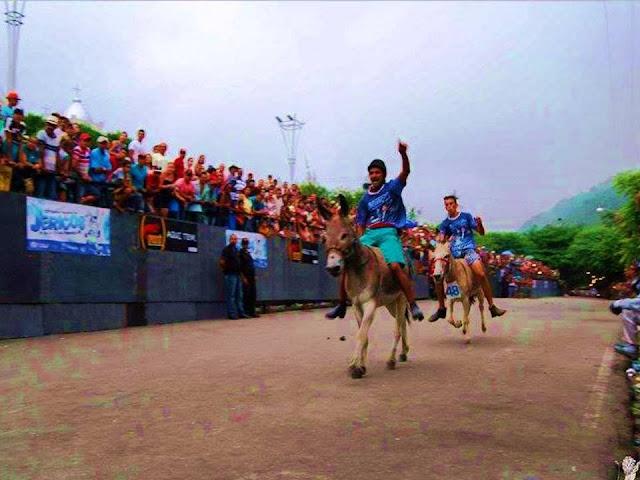 Festival Nacional de Jericos de Panelas-PE