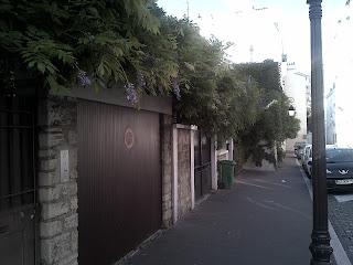 façades aux lierres grimpant  Buttes-aux-Cailles