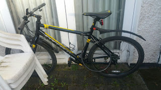 Stolen Bicycle - Carrera Mountain Bike