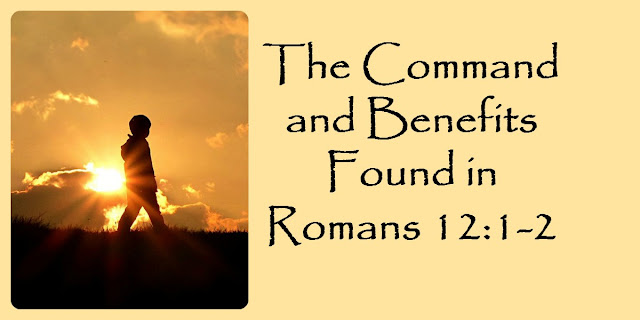 Transforming Our Minds - Romans 12:1-2