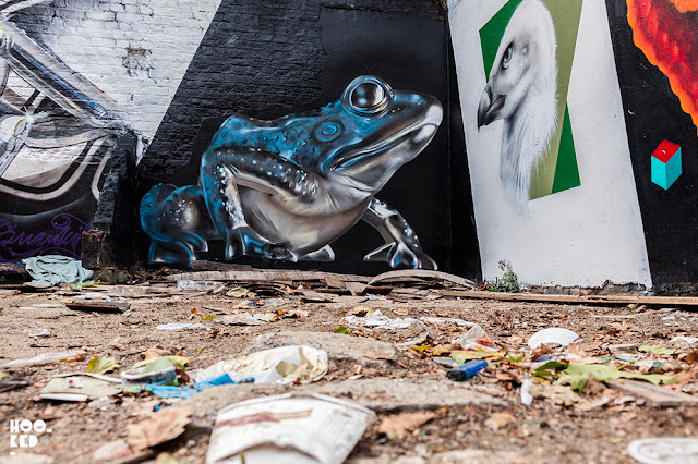 Street Art Mural featuring a 3D frog, painted in London by artist Fanakapan