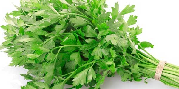 Parsley-for-bad-breath
