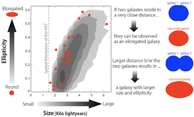 Deciphering compact galaxies in the young universe