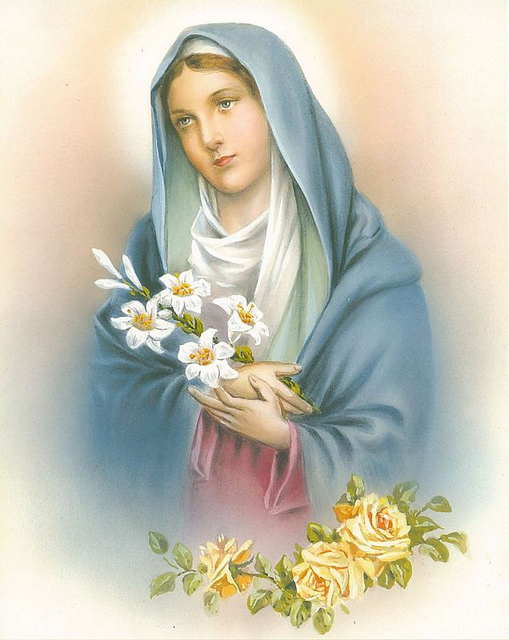 The Catholic Reader: Feasts of the Blessed Virgin Mary