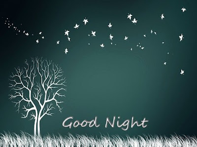 Good Night SMS, Quotes, Messages, Wishes